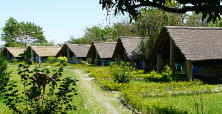 Kosi Tapu Wildlife Camp